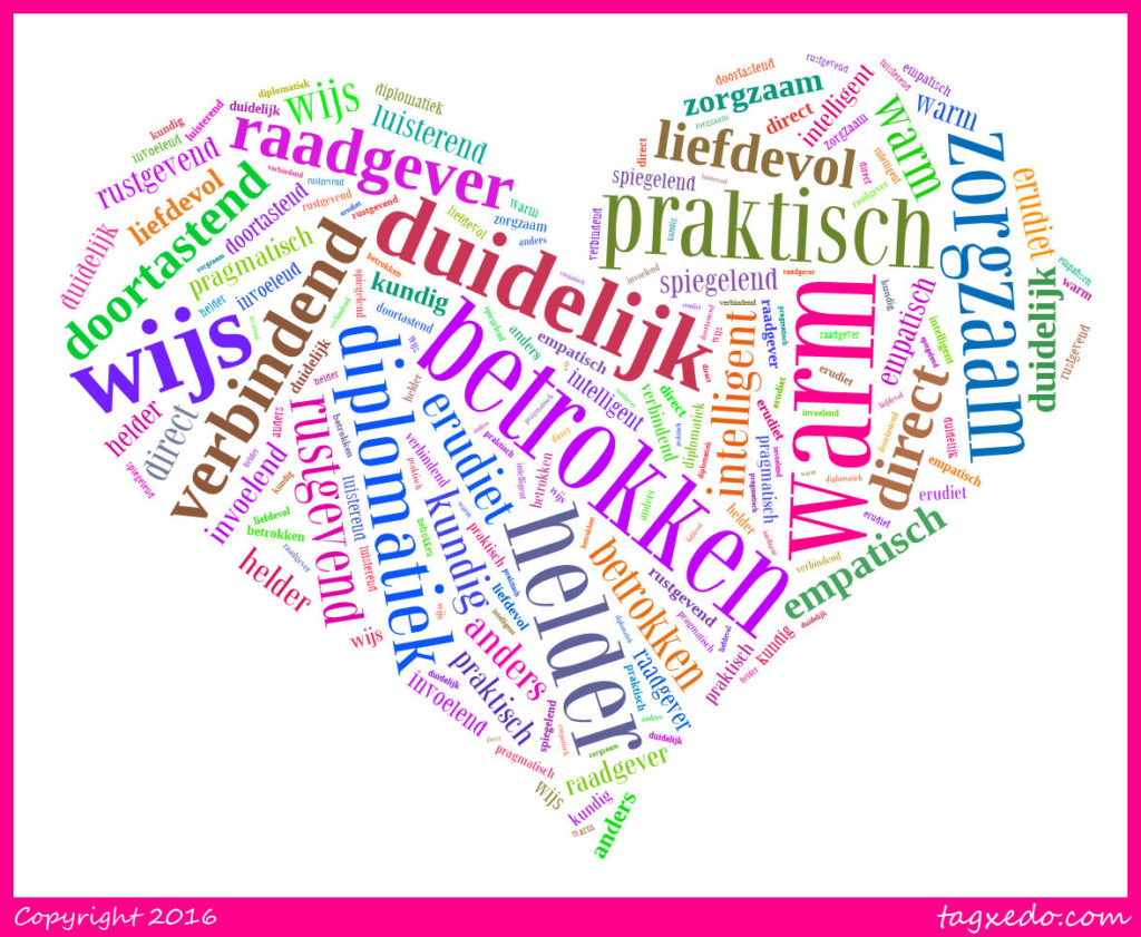 wordcloud1MP
